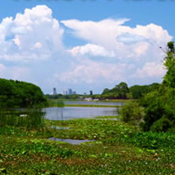 Boyd Hill Nature Preserve