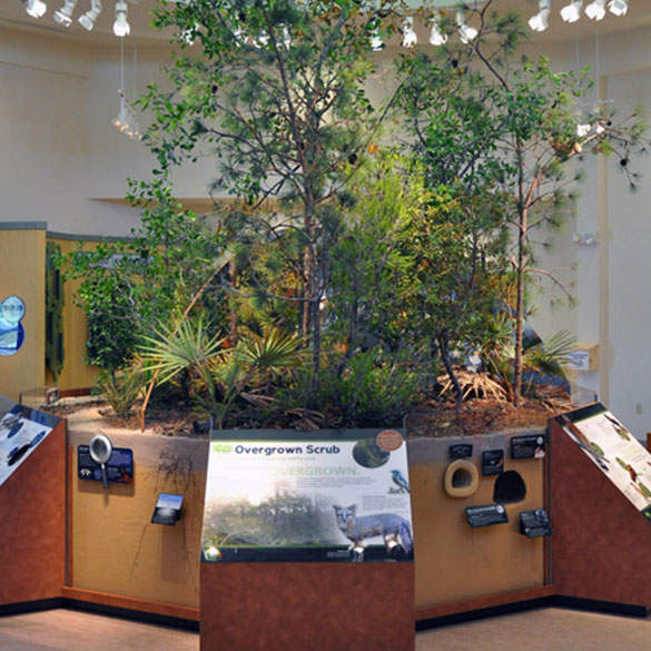 Lyonia Environmental Center