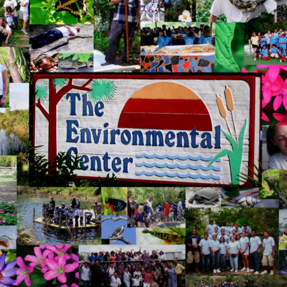 Miami Dade College Environmental Center