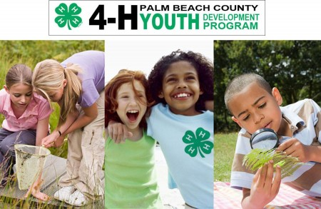 Palm Beach County Extension 4-H