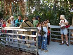 South Florida Audubon Society